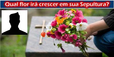 Que flor irá crescer em seu túmulo?
