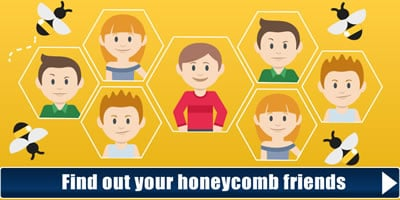 Find Your Honeycomb Friends