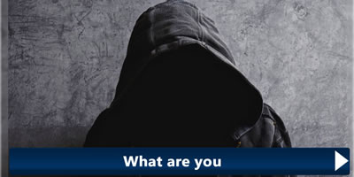 What Are You? Find Out Now