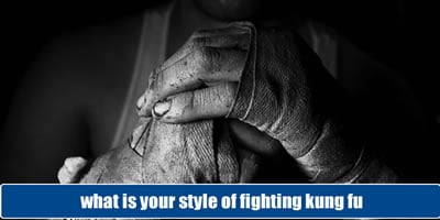 What Is Your Style Of Fighting Kung Fu