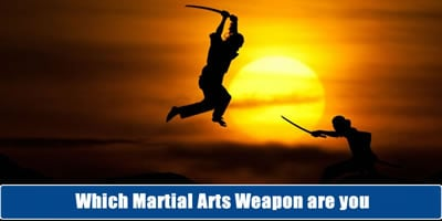 Which Martial Arts Weapon Are You?