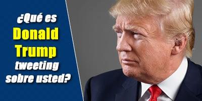 ¿Qué es Donald Trump Tweeting sobre usted?